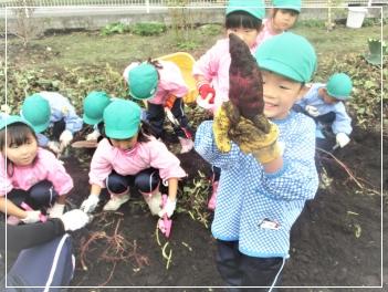 自然に触れ、自然の恵みを学ぶ農作物の収穫体験