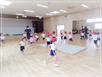 スポーツ指導専門の幼体連による体育指導